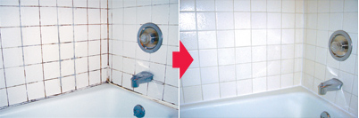 About Shower Repair LLC